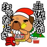 土佐犬弐main